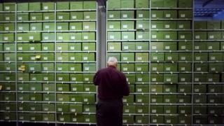 The Fungarium and Millennium Seed Bank Partnership at Kew