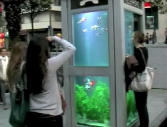 Phone Booth Aquariums Evasion Urbaine The Kid Should
