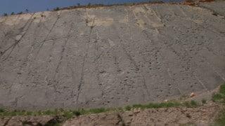 A cliff wall full of dinosaur footprints in Spain