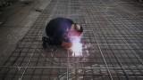 Making Florentijn Hofman's Feestaardvarken (Partyaardvark)