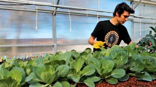How Gardening at School Enables Interdisciplinary Learning