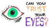 Can you trust your eyes? – AsapScience
