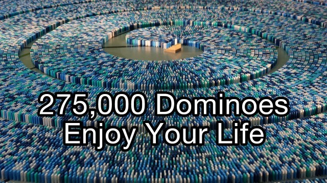 275,000 dominoes: a 2013 world record