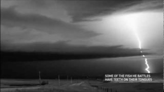 Incredible Slow Motion Lightning Strike