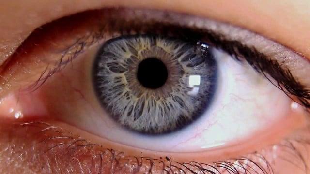 Close ups of the human eye