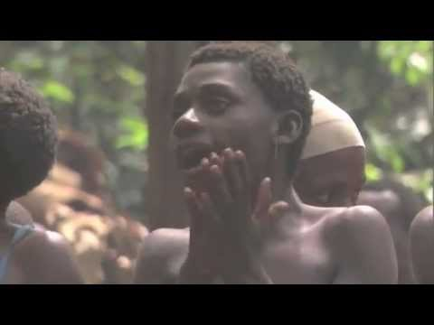 BaAka Forest People: Polyphonic singing
