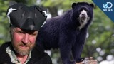 "How to make an origami ""Spectacled"" Andean Bear hat"