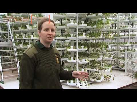 Paignton Zoo's Vertical Farm