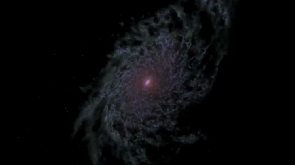 NASA: Computer Model Shows a Disk Galaxy's Life History ...