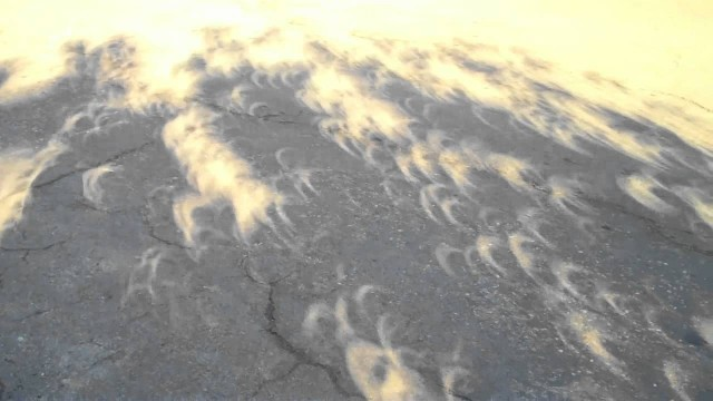 Strange & beautiful shadows created by the annular solar eclipse