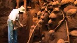 Ants: Nature's Secret Power –Excavating a giant ant hill