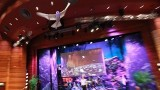 A Robot That Flies Like A Bird: Festo at TED