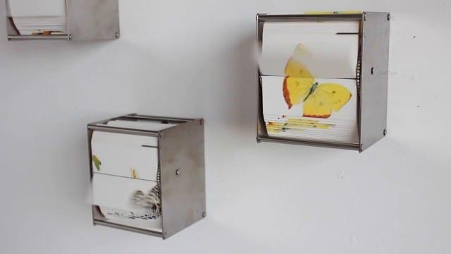 Juan Fontanive's mechanical, looping flipbooks: Vivarium