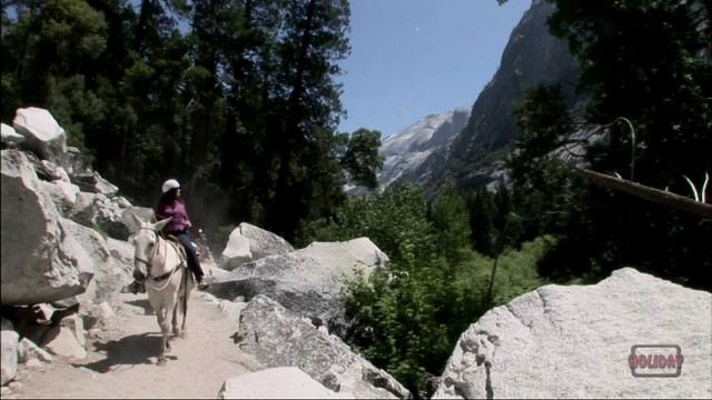 Horseback Riding in Yosemite National Park
