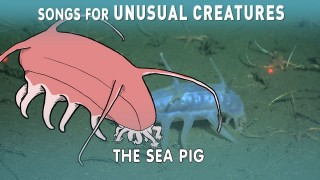 The Sea Pig – Songs for Unusual Creatures