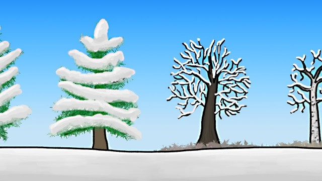 Minute Earth: How do trees survive winter?