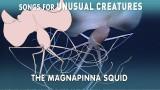 Magnapinna Squid –Songs for Unusual Creatures