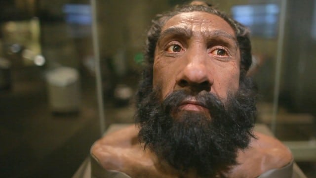 Ancient Ancestors Come to Life at the Smithsonian