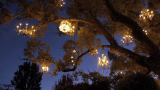 The Chandelier Tree: Silver Lake's twinkling neighborhood gem