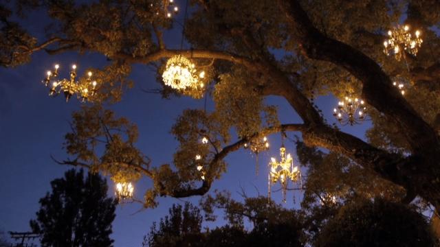The Chandelier Tree – Silver Lake's twinkling neighborhood gem