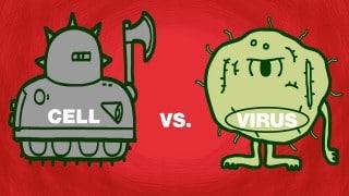 Cell vs. virus: A battle for health