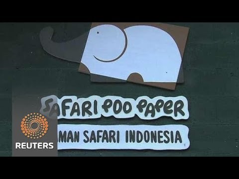 Making paper from elephant dung: Poo Paper