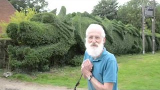 The Dragon Hedge