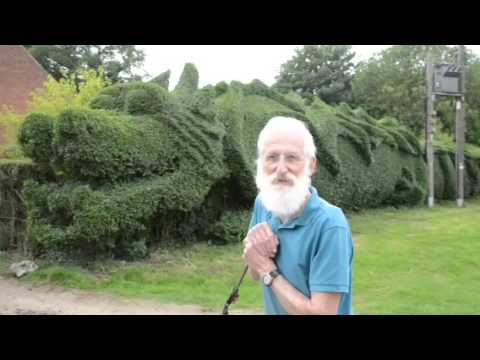 The Dragon Hedge: A 100 foot long dragon-shaped topiary