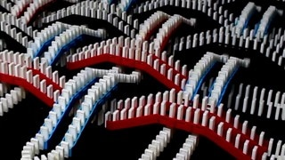 FlippyCat's Spectacular Domino Rally Stunt Screenlink