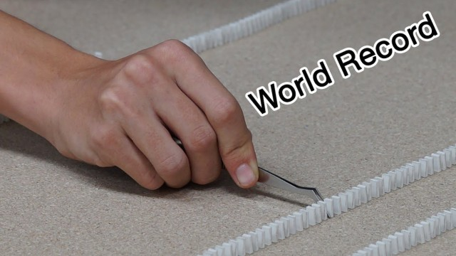 Guinness World Record – Most mini-dominoes toppled