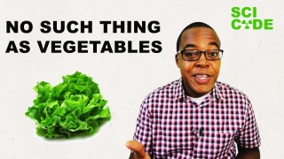 Sci Code: There's no such thing as vegetables