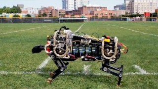MIT's electric cheetah-bot runs offleash