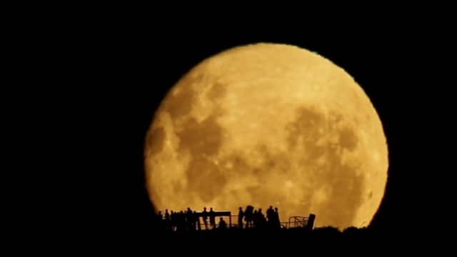 Full Moon Silhouettes: A full moon rises in real time