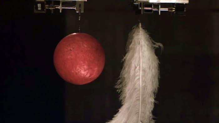 Edward Mirell Wedding Bands 76 Amazing Magnets u Marbles Kaplamino
