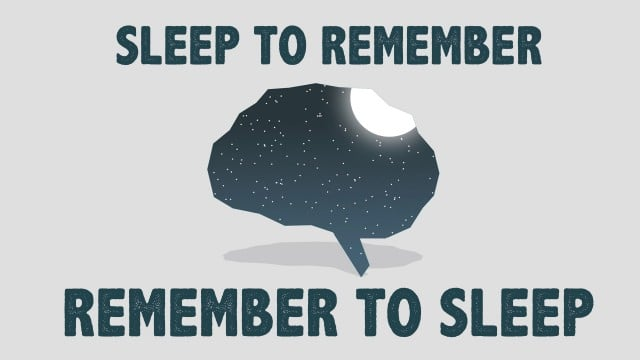 TED Ed: The benefits of a good night's sleep