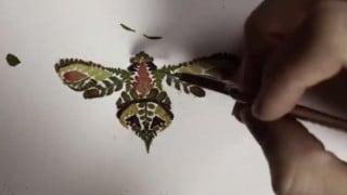 Helen Ahpornsiri's intricate pressed fern illustrations