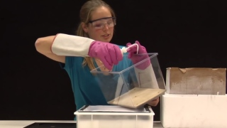 DIY Cloud Chamber – How to build your own particle detector