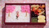 The Diary of Ochibi – Moyoco Anno's stop motion ode to the seasons