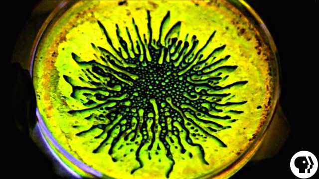 Ferrofluid + Glow Sticks – The Physics Girl