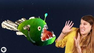 Why Do Deep Sea Creatures Look So Scary?