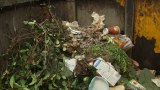 How Does Oakland Turn Food Scraps to Soil?