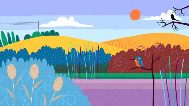 By The River – An animated introduction to five kinds of birds