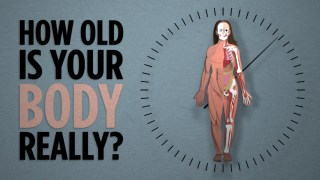 How Old Is Your Body, Really?
