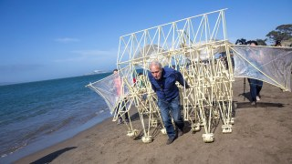 Theo Jansen's Strandbeest on the beach in San Francisco