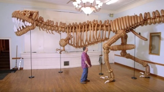 A life-size T-Rex dinosaur made of balloons
