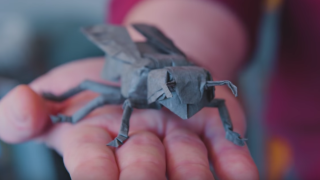 A Fold Apart: Origamist Robert Lang's Incredible Paper Creations