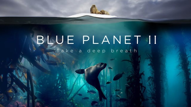Blue Planet II, a prequel set to music by Hans Zimmer and Radiohead