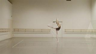 Ballet Rotoscope