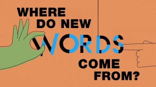 Where do new words come from? –TED Ed
