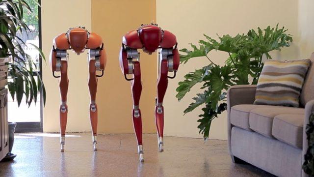 Cassie, Agility Robotics' ostrichlike bipedal robot